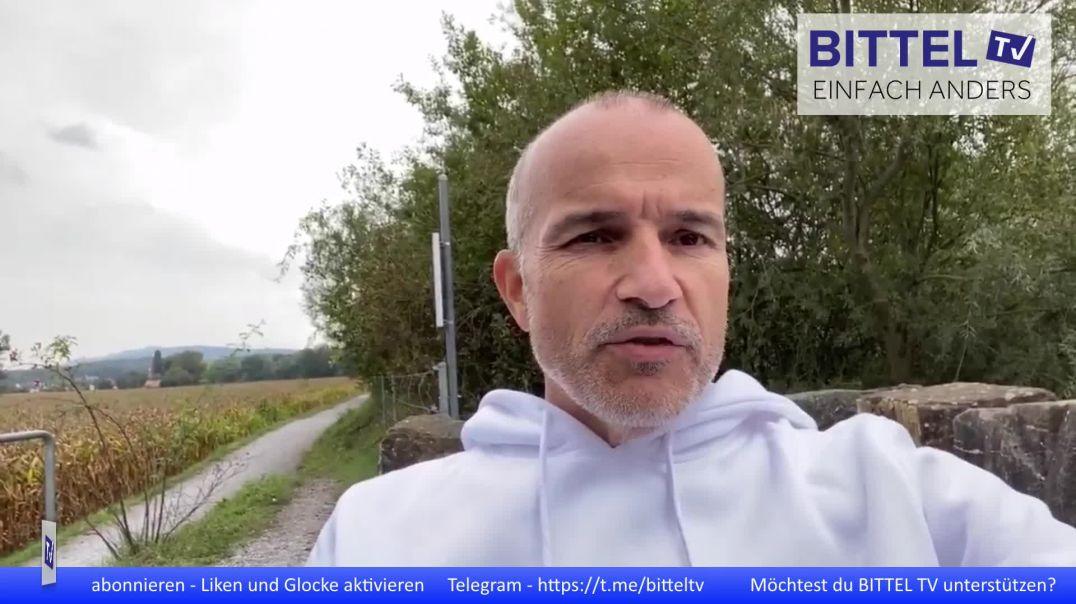 Video von Bodo
