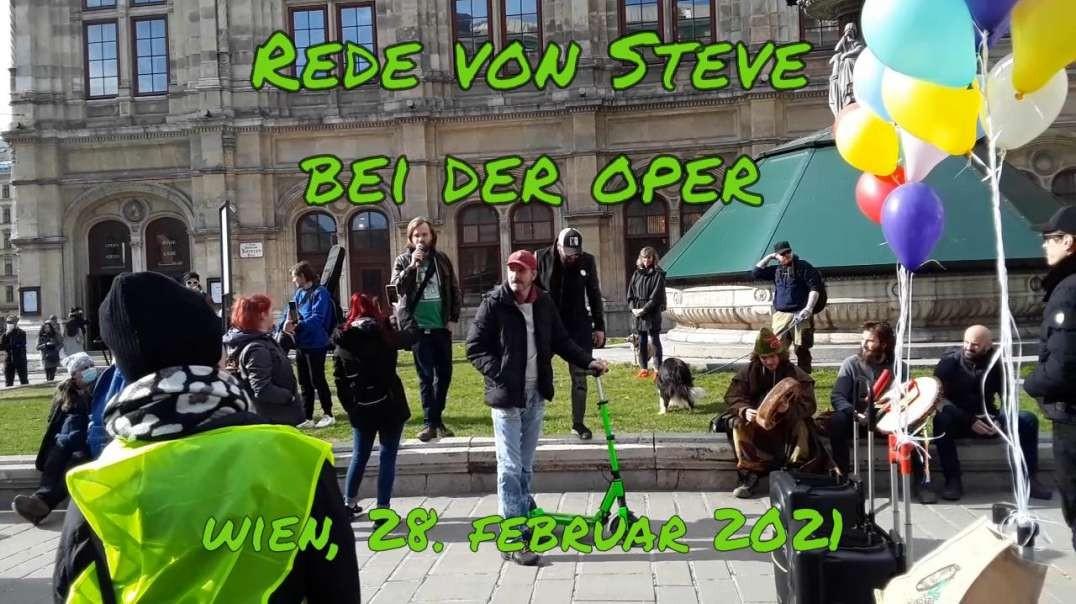 SPAZIERGANG FÜR MEHR MENSCHLICHKEIT in WIEN am 28.2.2021 - Rede von Steve