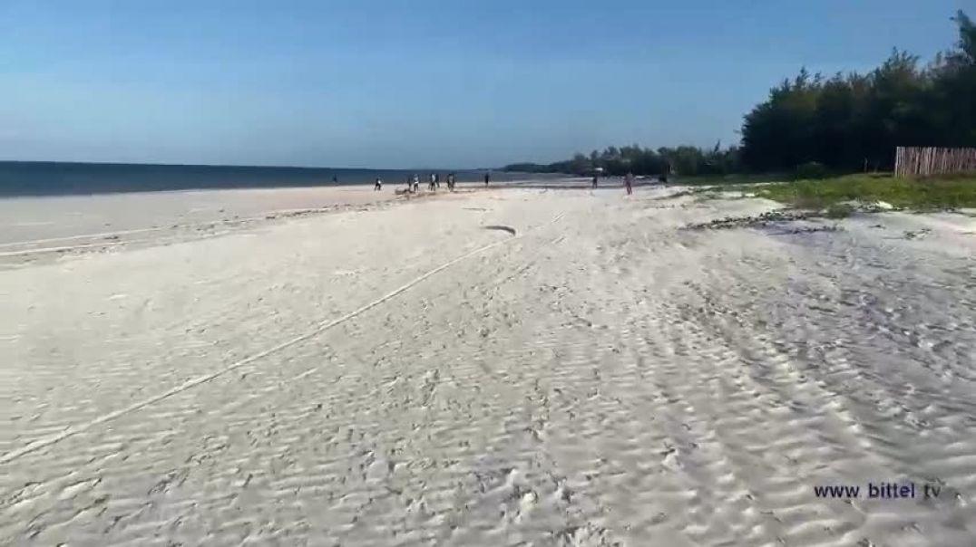 LIVE - Dies und Das am Beach