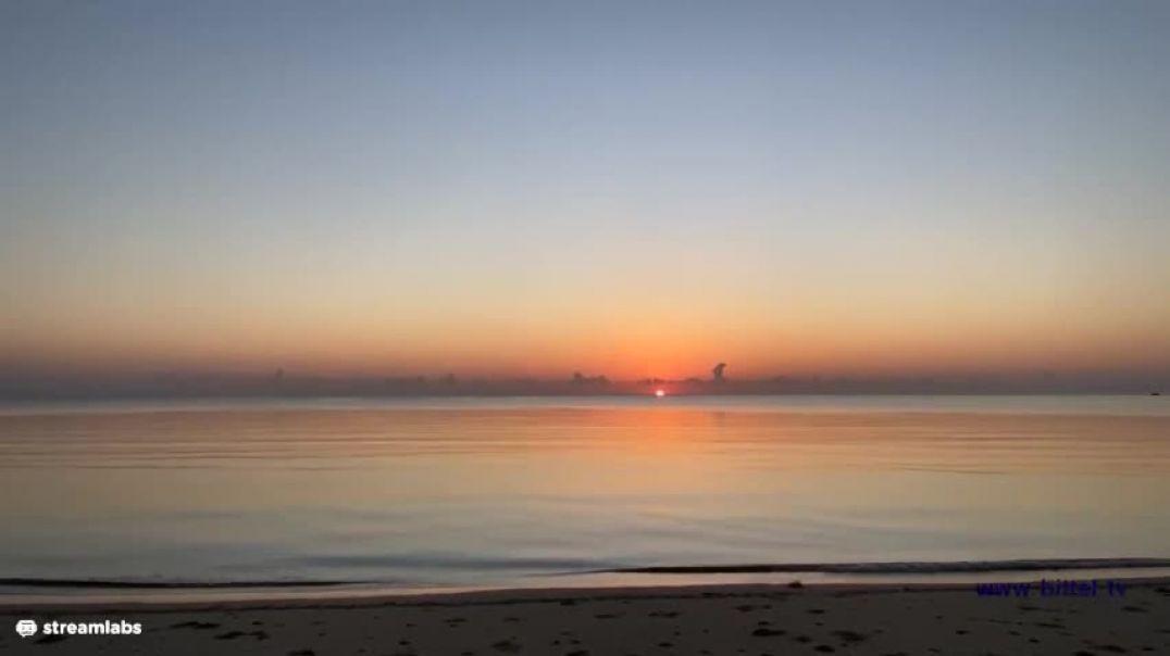 LIVE - Sonnenaufgang